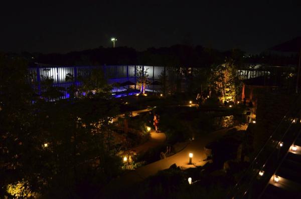 夜の京の里山ゾーン