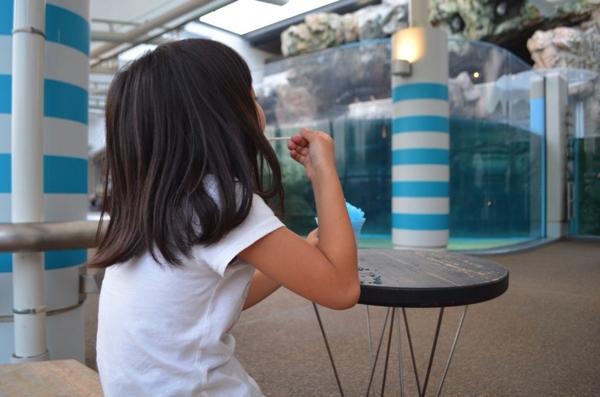 [京都水族館]ランチ(飲食)する場所はある? ぼ〜っとできる「かいじゅうカフェ」がおすすめ! | ごりらのせなか
