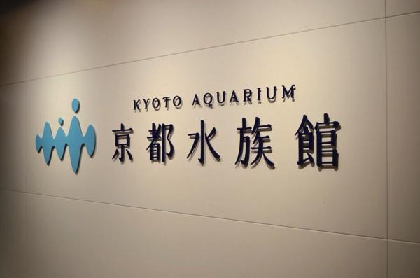 京都水族館は年間パスポートがお得