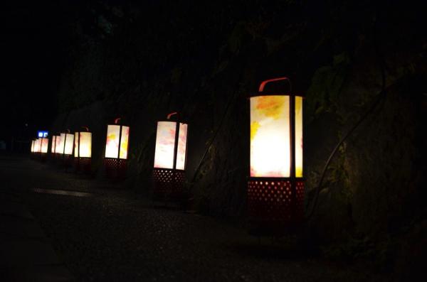 京都の夜を散策しよう! 「京都・東山花灯路 2016」円山公園~あおくすの庭 | ごりらのせなか