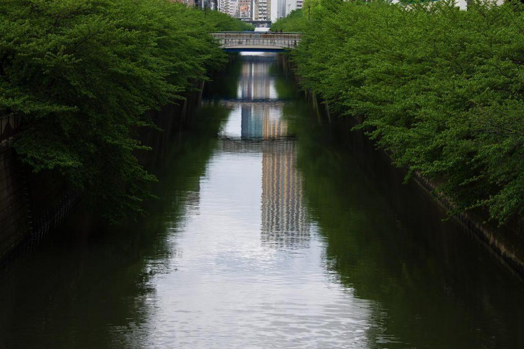 25NJ_aoaosiimegurogawa_TP_V