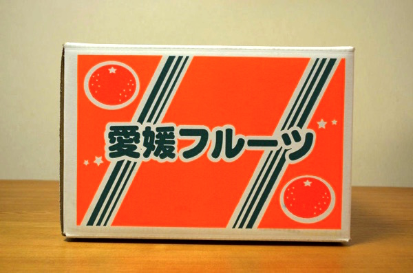 「愛媛みかんの大漁屋」の段ボール箱