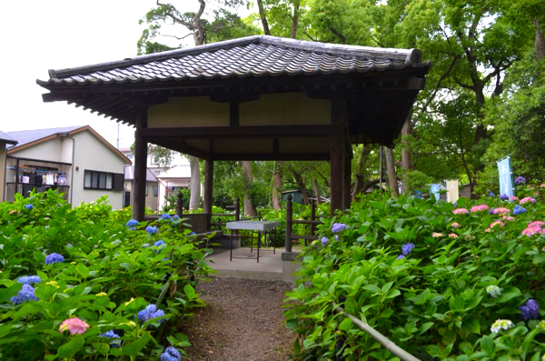 第一紫陽花苑の休憩スペース