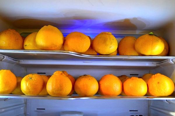 デコポンは冷蔵庫の中で保存