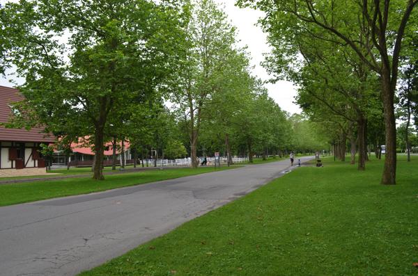 ノーザンホースパーク園内の風景