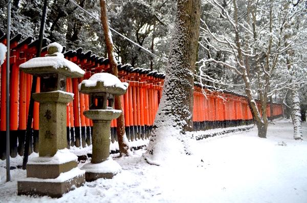 雪の日の伏見稲荷「千本鳥居」