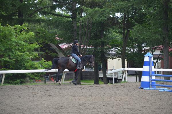 本格的な乗馬も観覧できるライディングエリア