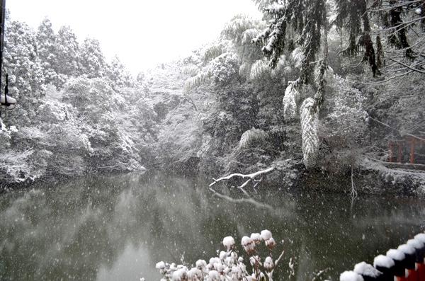 雪の日の稲荷山「新池」