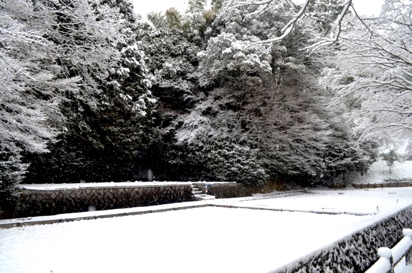 雪の日の伏見稲荷「神田」