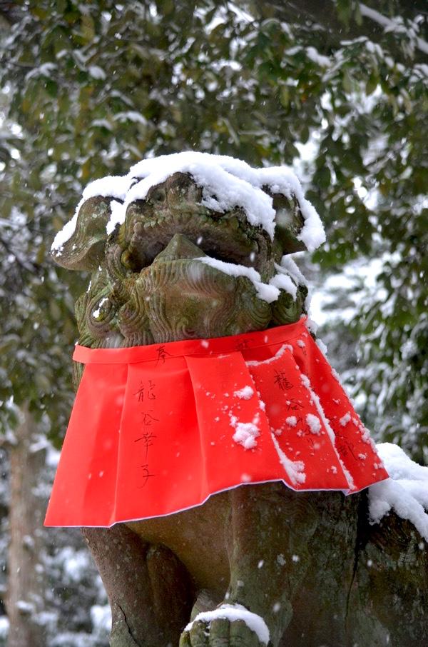雪の日の伏見稲荷の狛犬