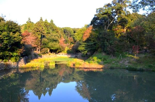 八島ヶ池(お産婆池)