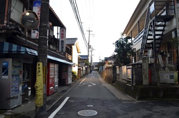 川田道のようす