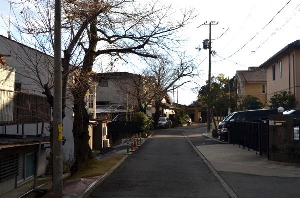 花山稲荷神社の北側の参道