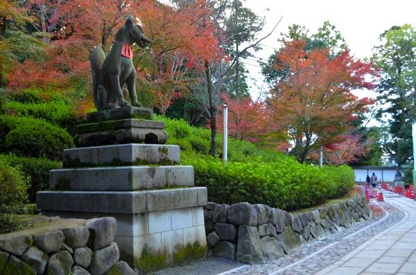秋には紅葉が色づく