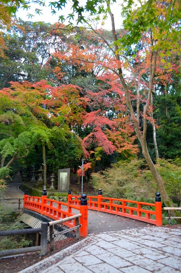 十石橋と紅葉(撮影:2017年11月19日)