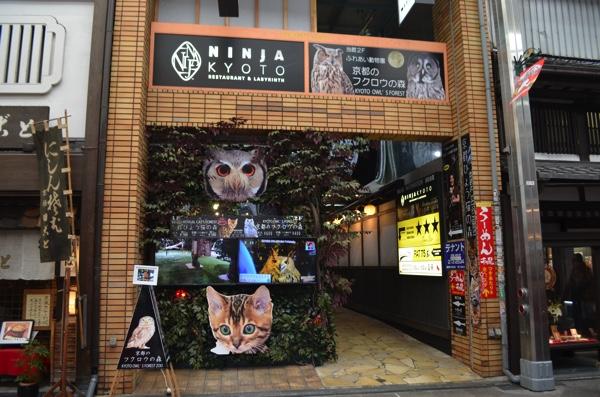 「京都のフクロウの森」の外観