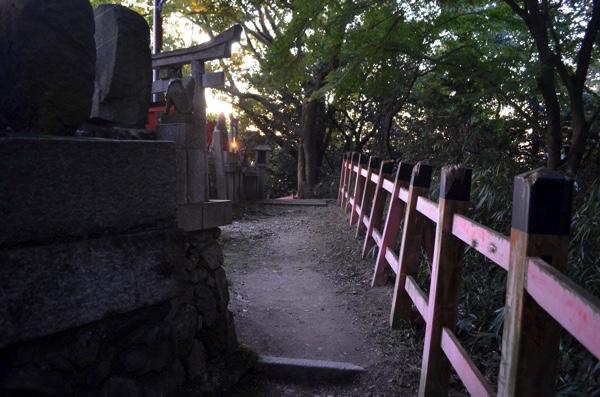 田中社(権太夫大神)の裏側