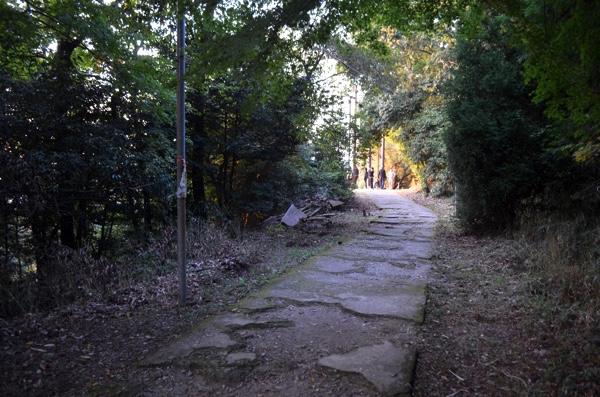 夕方の穴場までの道