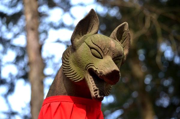 白狐「…」