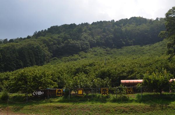 森口栗園の外観