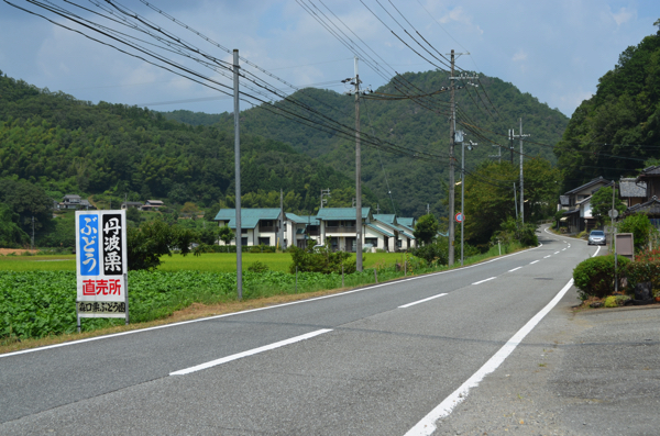 県道300号線