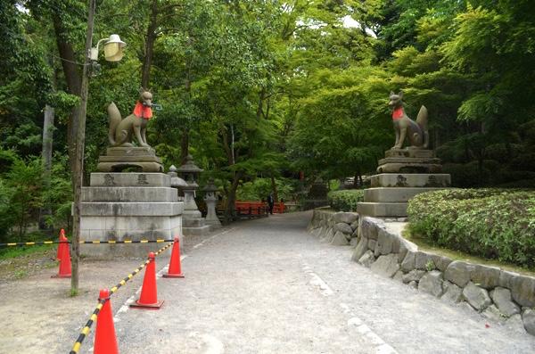 稲荷山・神田への参道