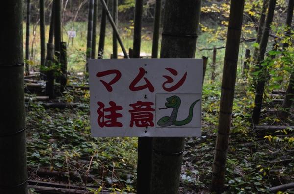 「マムシ注意」の看板