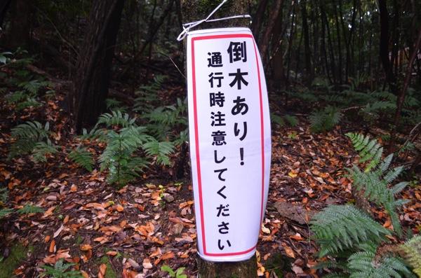 「倒木あり! 」の看板