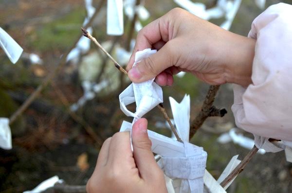 おみくじを枝に結びつける