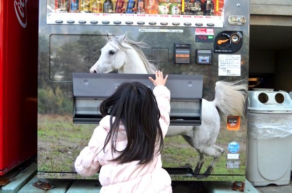 参集殿前の自動販売機