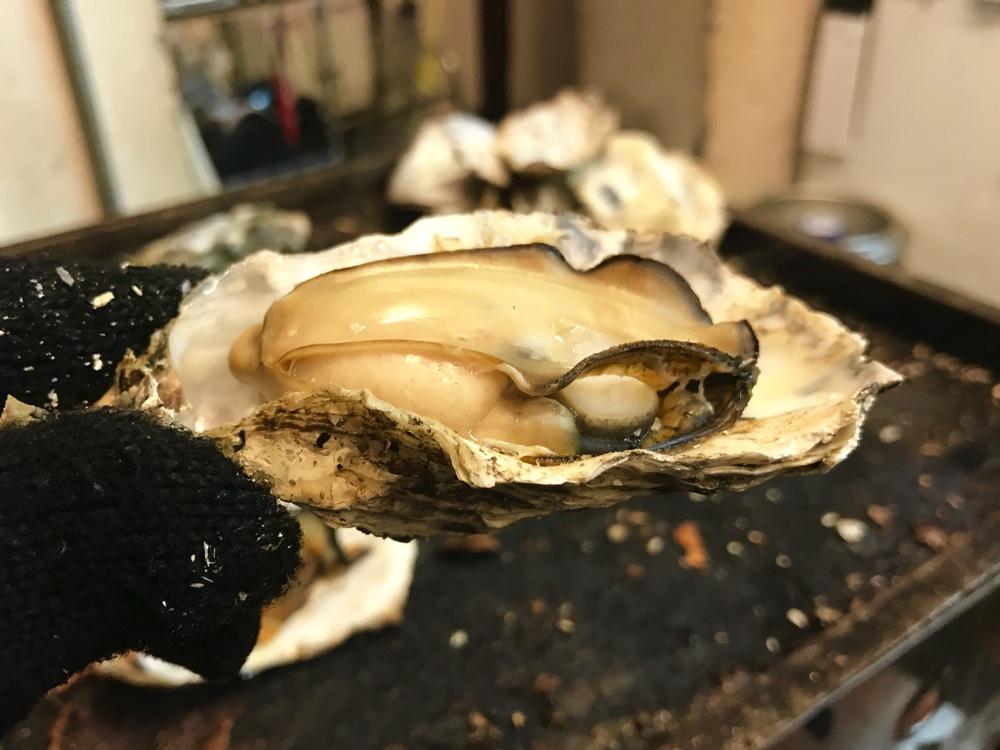 焼き牡蠣が食べ放題!!