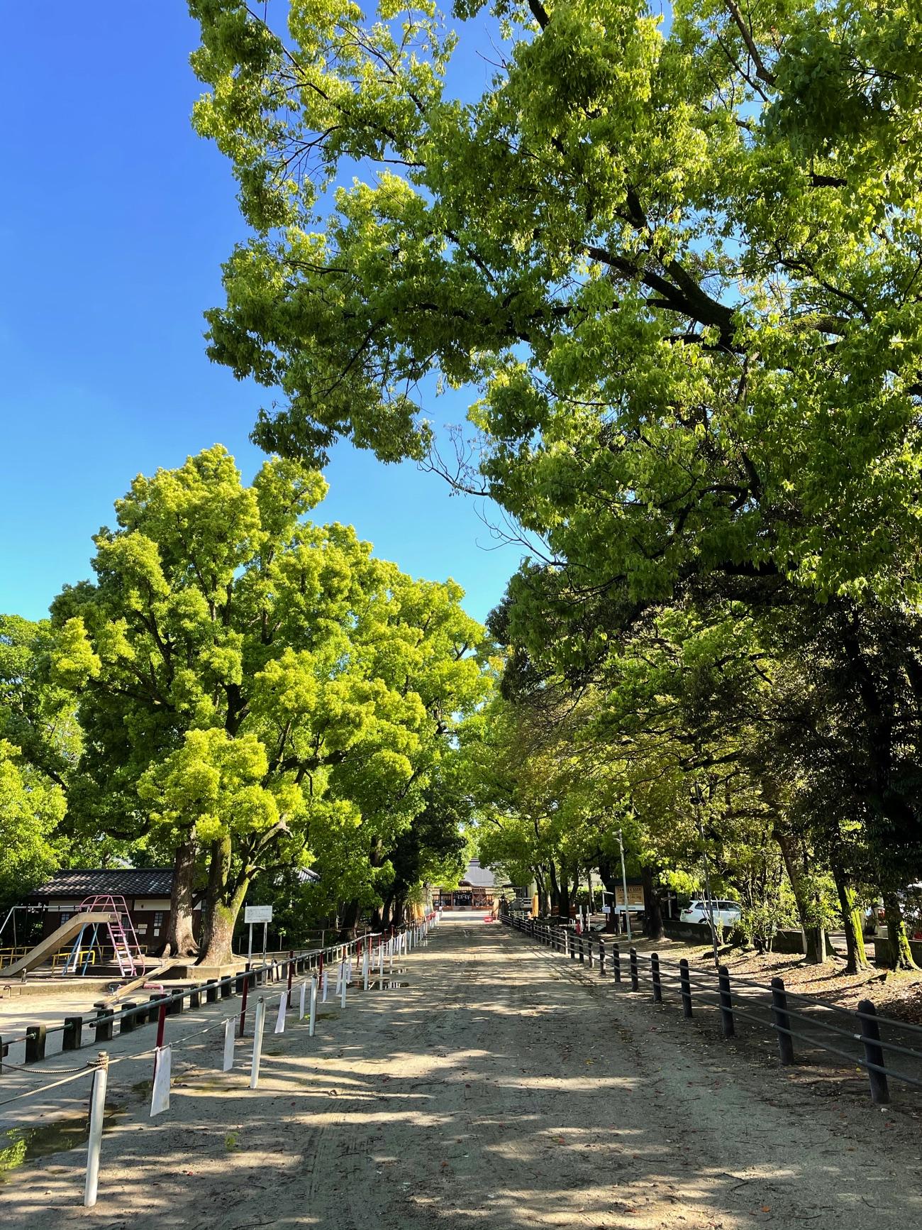 藤森神社の参道