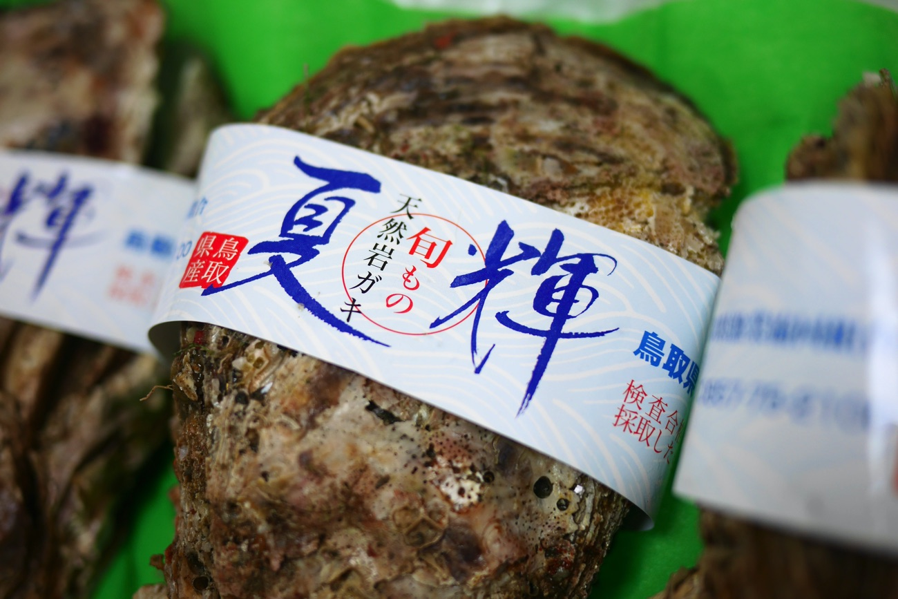 鳥取県産の天然岩ガキ「夏輝」