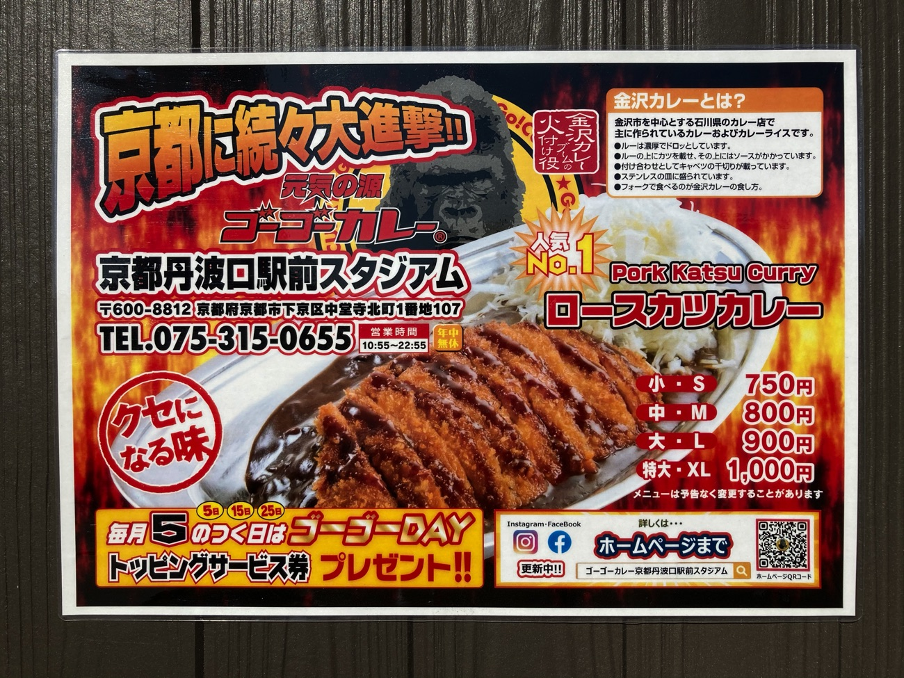 京都市内初出店の「ゴーゴーカレー」