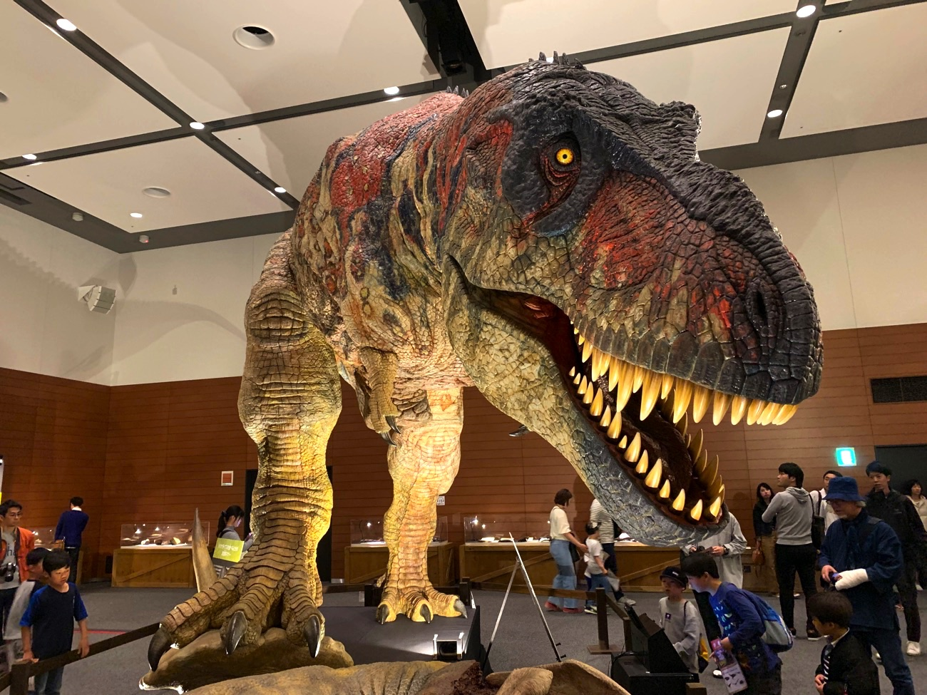 「大恐竜展 in なんば」のティラノサウルス