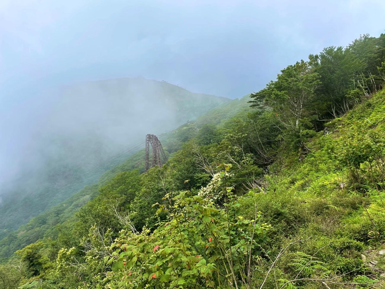 ロープウェイの鉄塔