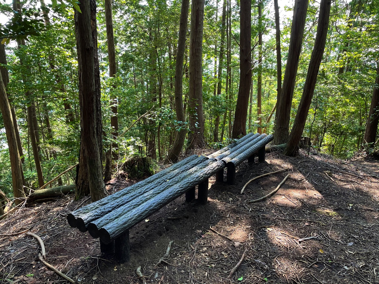 山道脇のベンチ