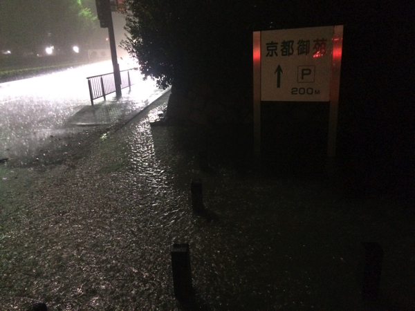 道路と水の区別がつかない!