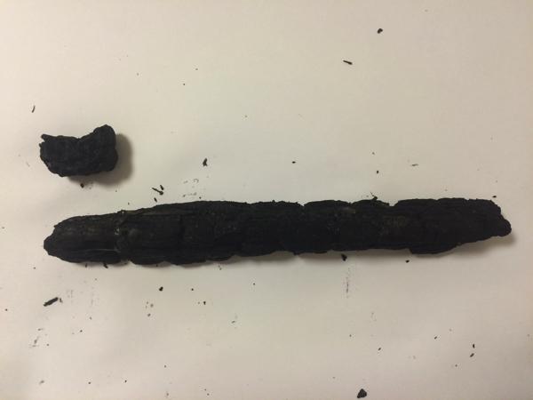 一番長い消し炭は24.8cmも!