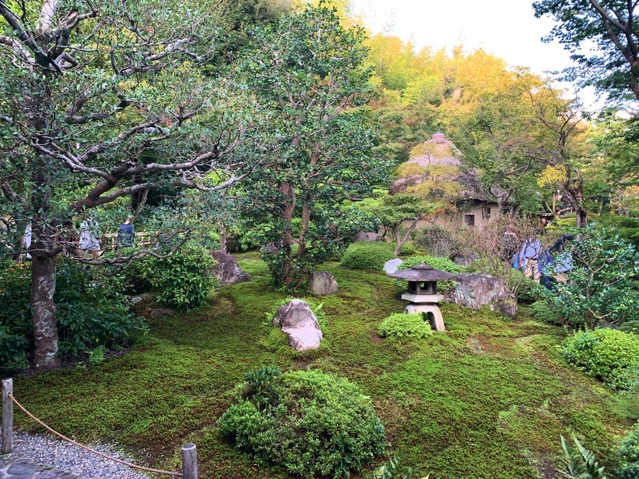 「鈴虫寺」の庭園