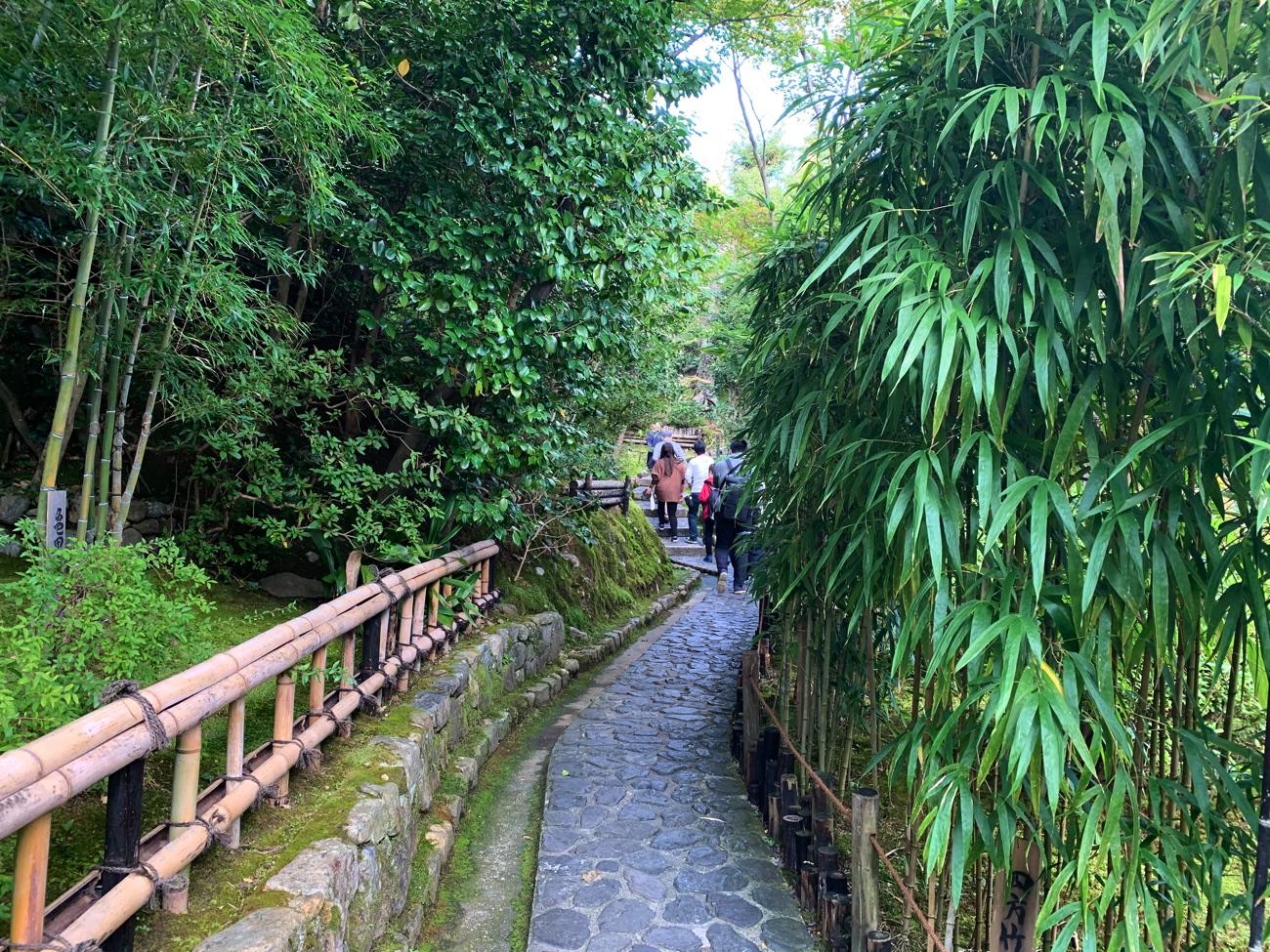 竹の小径を歩く
