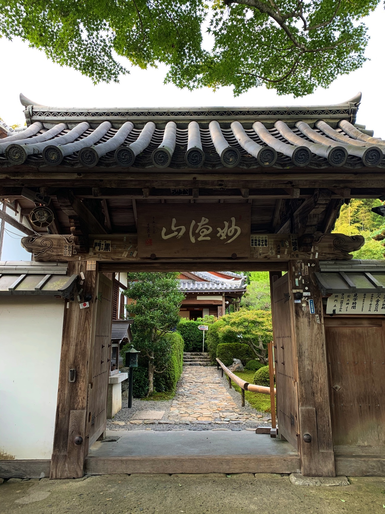 「鈴虫寺」の山門