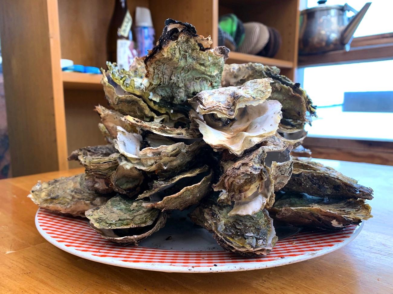 お皿いっぱいに盛られた牡蠣!