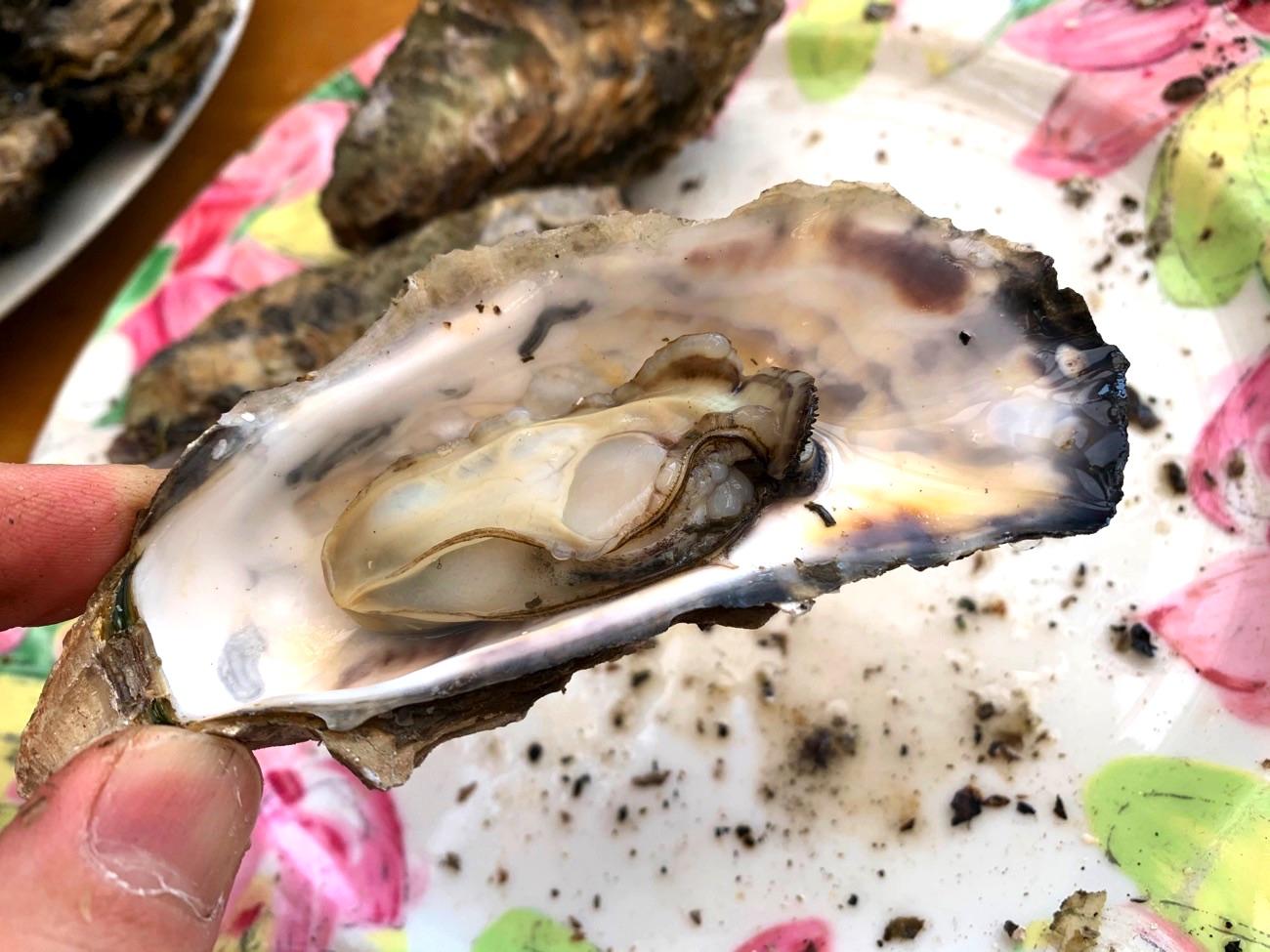 美味しい焼き牡蠣