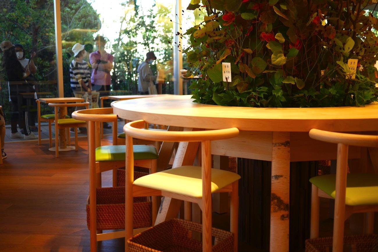 植物を囲っているテーブル