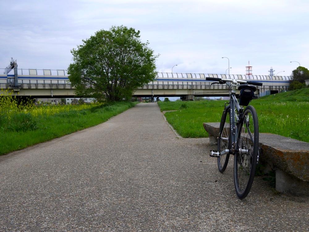 鴨川沿いのサイクリングロード