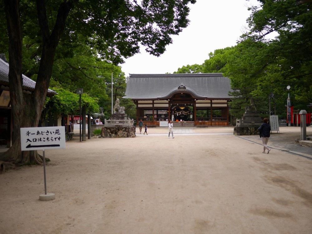 藤森神社には2つの紫陽花苑がある