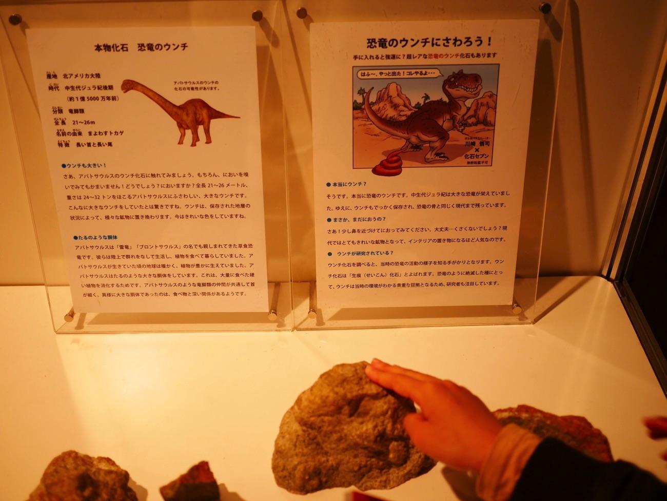 恐竜のうんちにタッチ!?