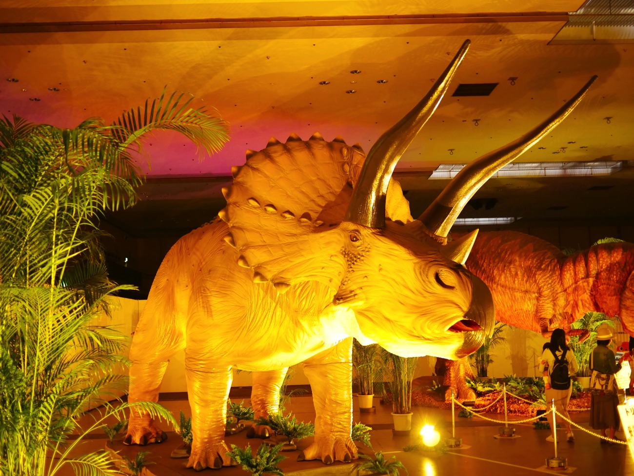 実物大のトリケラトプス