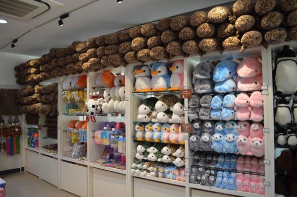 京都水族館だけのオリジナルグッズもあります!